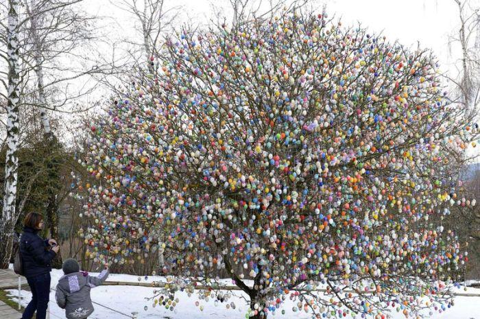 Germany Easter Egg Tree
